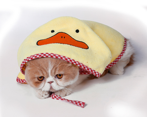 Yellow Duck Pet Towel