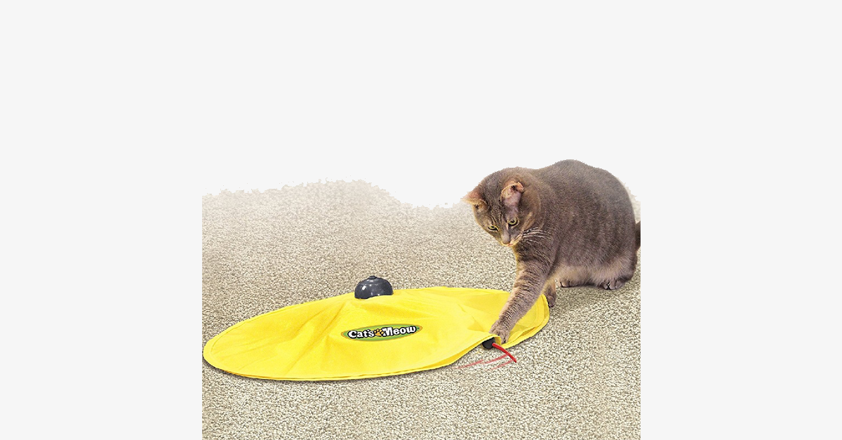 Undercover Fabric Moving Mouse Toy