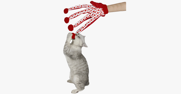 Toy Scratch Glove