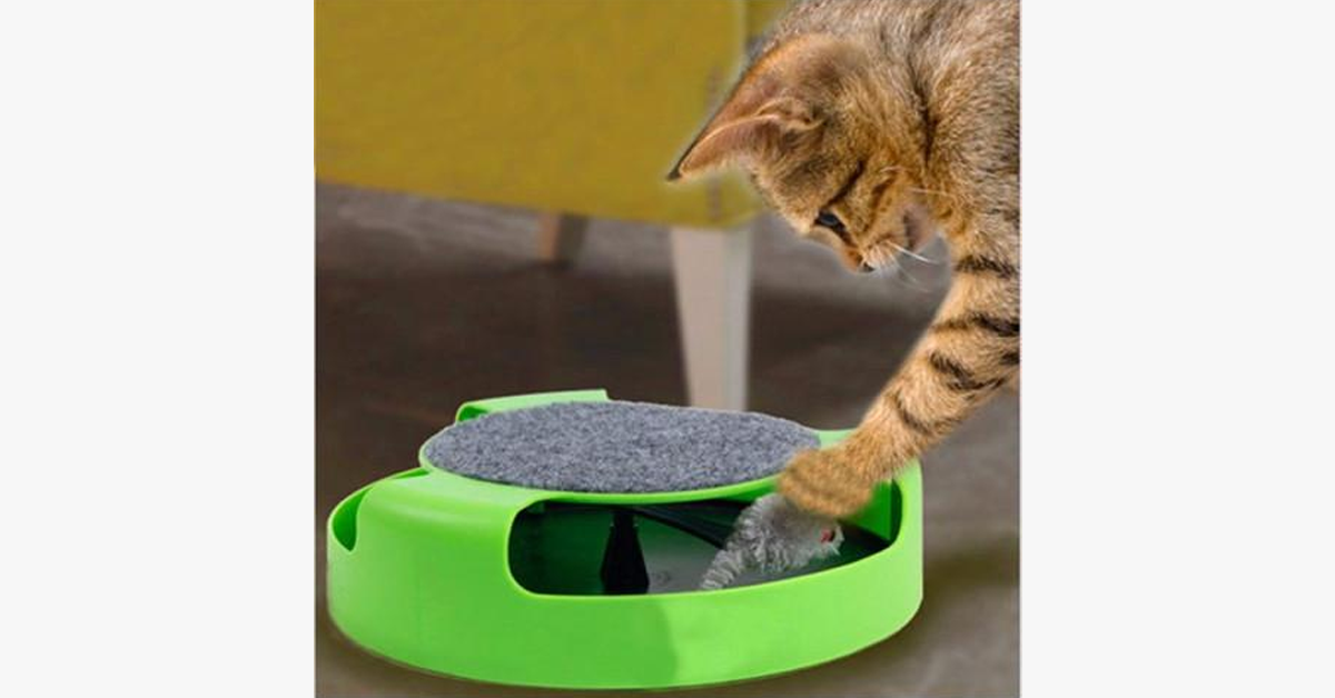 Interactive Cat Scratch Pad Toy