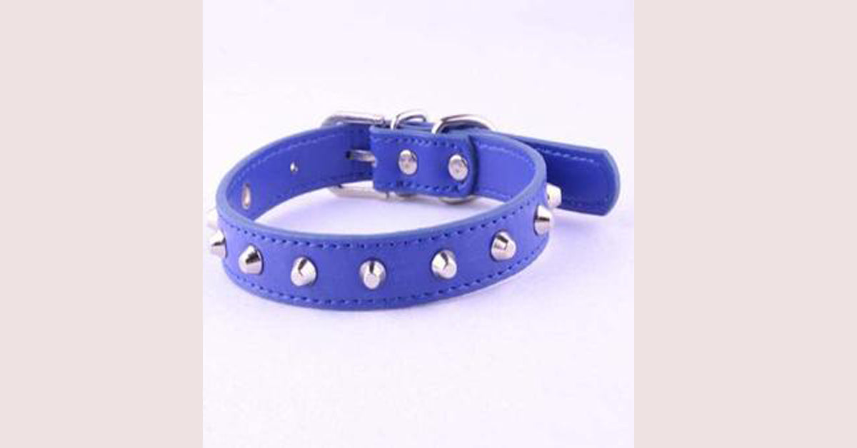 Blue Rivet Leather Collar