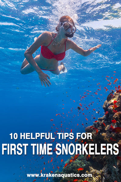 10 Helpful Tips For First Time Snorkelers