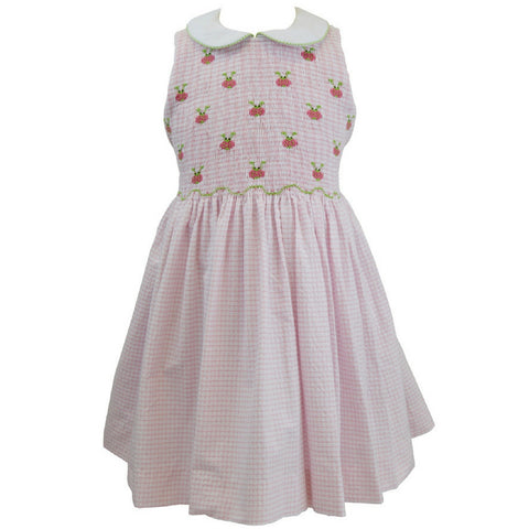 marco and lizzy ladybugs full smocked dress