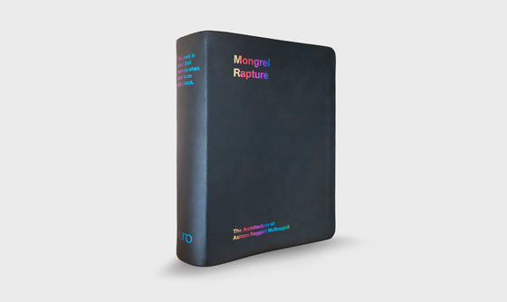 Mongrel Rapture receives Architecture in the Media award