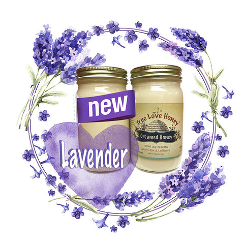 Creamed Lavender Honey (8oz jars) with FREE SHIPPING in the USA