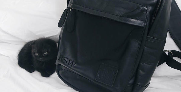 MAHI Leather Classic Backpack in Ebony Black with Young, Small Kitten