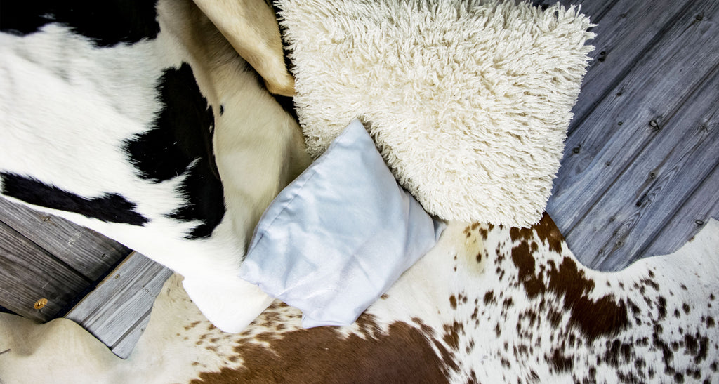 A Guide to Cowhide Rugs