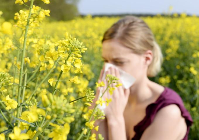 Allergy Relief Without Drugs