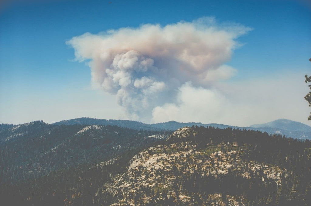 Tips For Dealing With Smokey Air During The Wildfire Season | Clear Revive