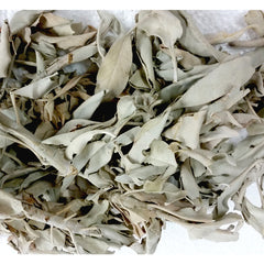 white sage, smudging with sacred herbs