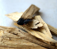 palo santo for smudging unwanted energies