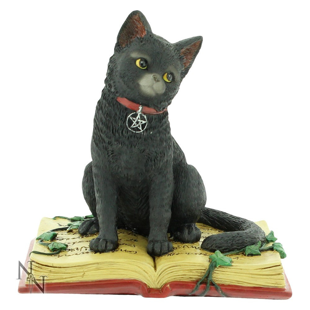 figurines, statues, cat, book -  Lylliths Emporium, wicca pagan witchcraft spiritual supplies Australia