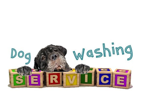 Dog Washing Services