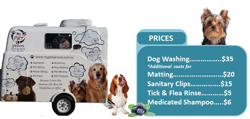 Mobile Dog Washing Prices