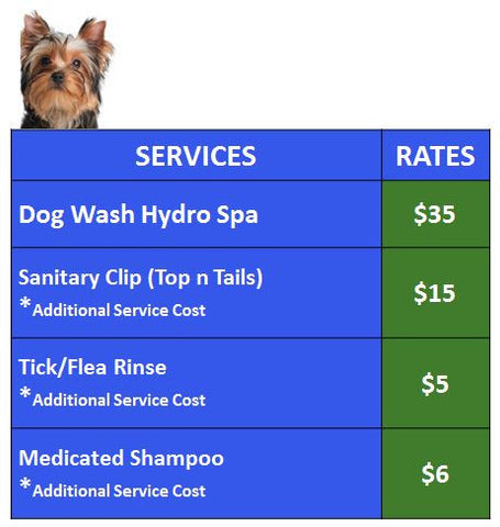 My Pet Services Dog Wash Prices