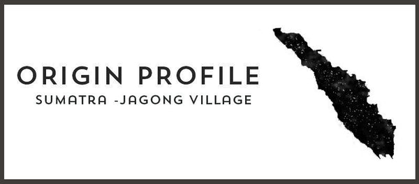 Origin Profile: Jagong Village, Sumatra