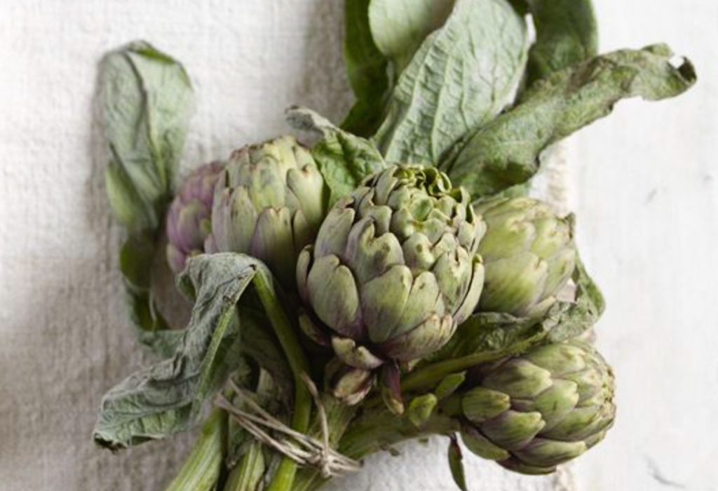 Spotlight on superfood: give your brain a boost with artichoke