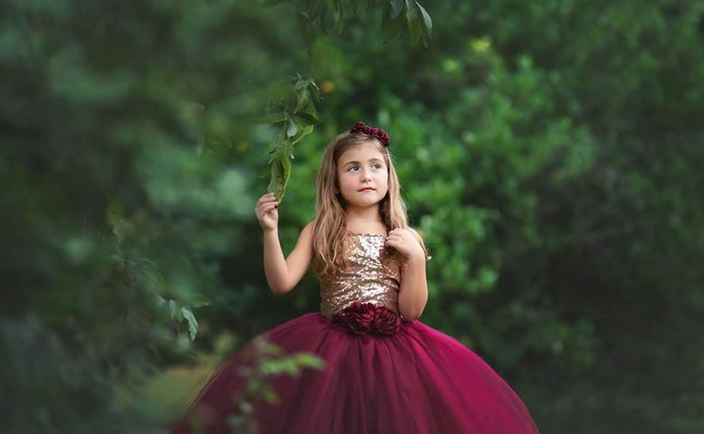 Burgundy and Champagne Tutu Dress, Burgundy Wine Flower Girls Dress, Fall Wedding Flower Girl - Little Ladybug Tutus