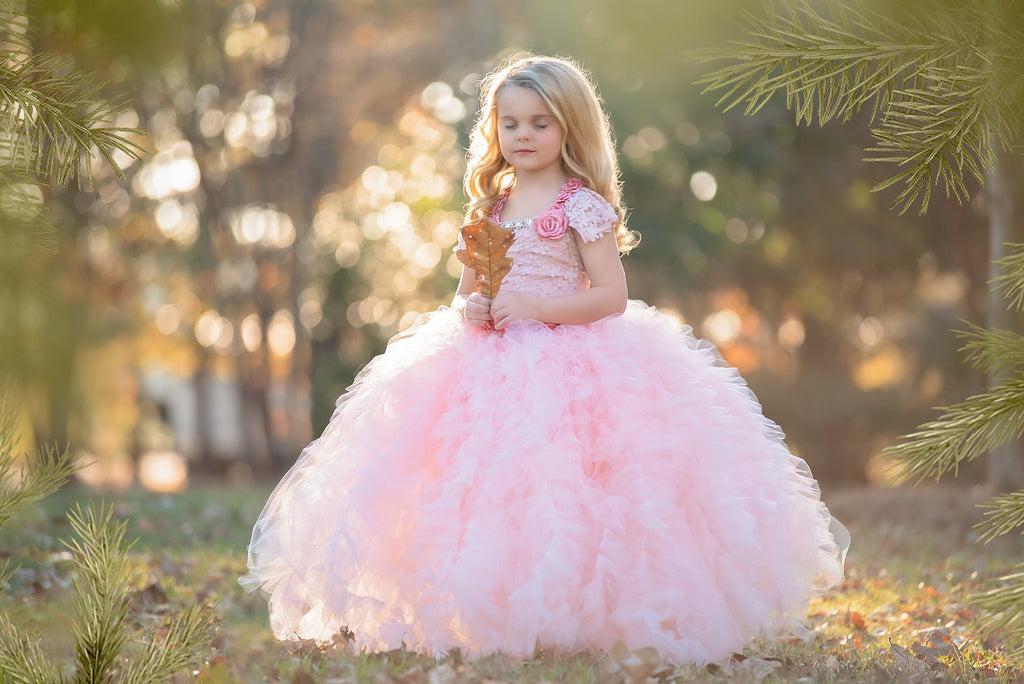 Blush Lace Ruffled Tutu Dress