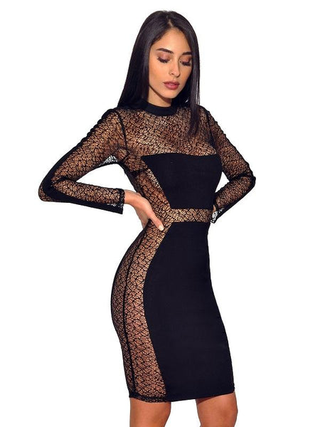Dariya Black Sheer Mesh Long Sleeve Stretch  Dress
