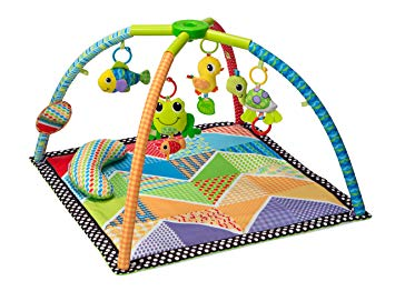 Topsy Turvy Twist & Fold Gym