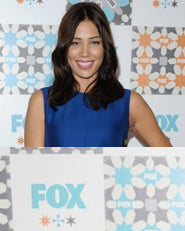 Television Critics Association All-Star Party