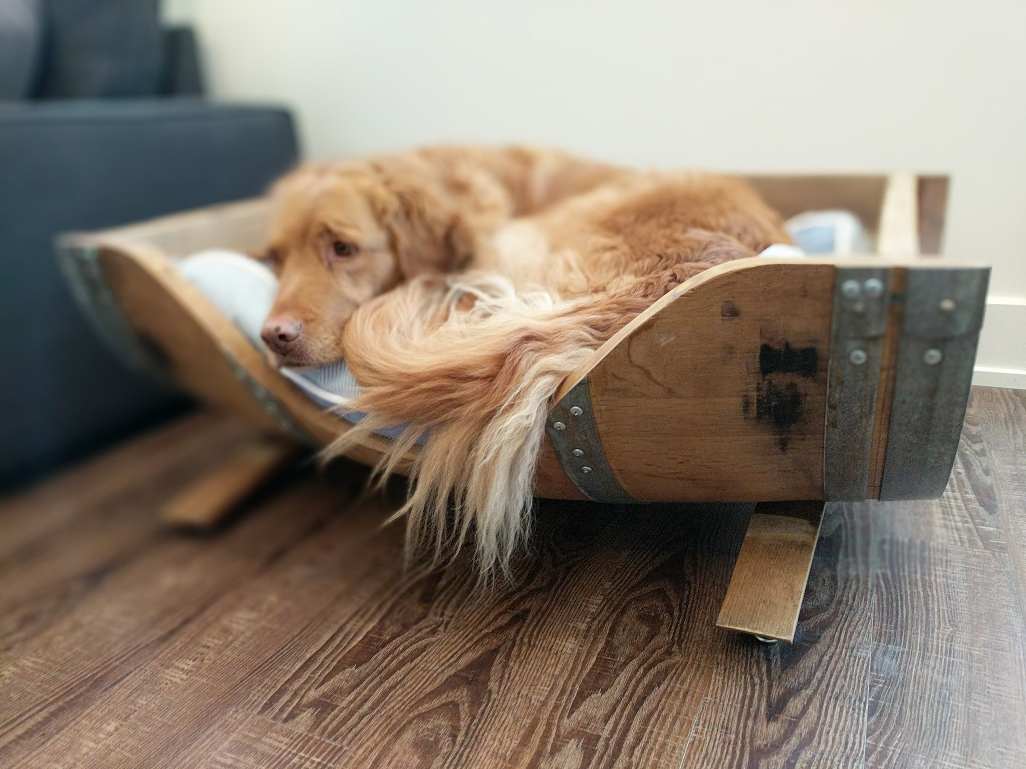 Large Barrel Dog Bed