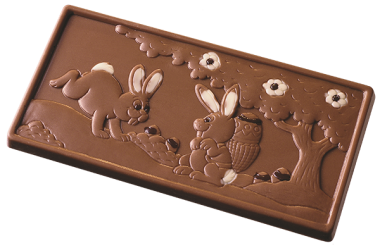 Chocolate Mould RB998