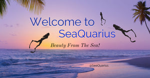SeaQuarius Skincare from the Sea / Ocean derived ingredients for healthy vibrant skin