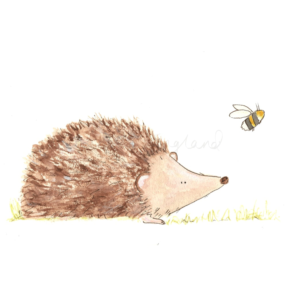 Hedgehog and Bee - Charlotte England Artist