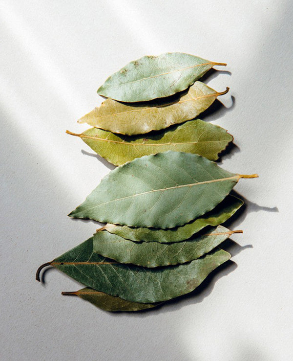 BALSAMIC BAY LEAVES