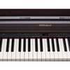 Roland RP501R SuperNATURAL Digital Piano - Black