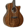 Tanglewood Evolution Exotic Pacific Walnut Super Folk Cutaway Electro Acoustic Guitar