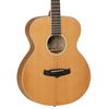 Tanglewood Winterleaf Exotic Orchestra Acoustic Guitar - Solid Cedar + Olive Wood