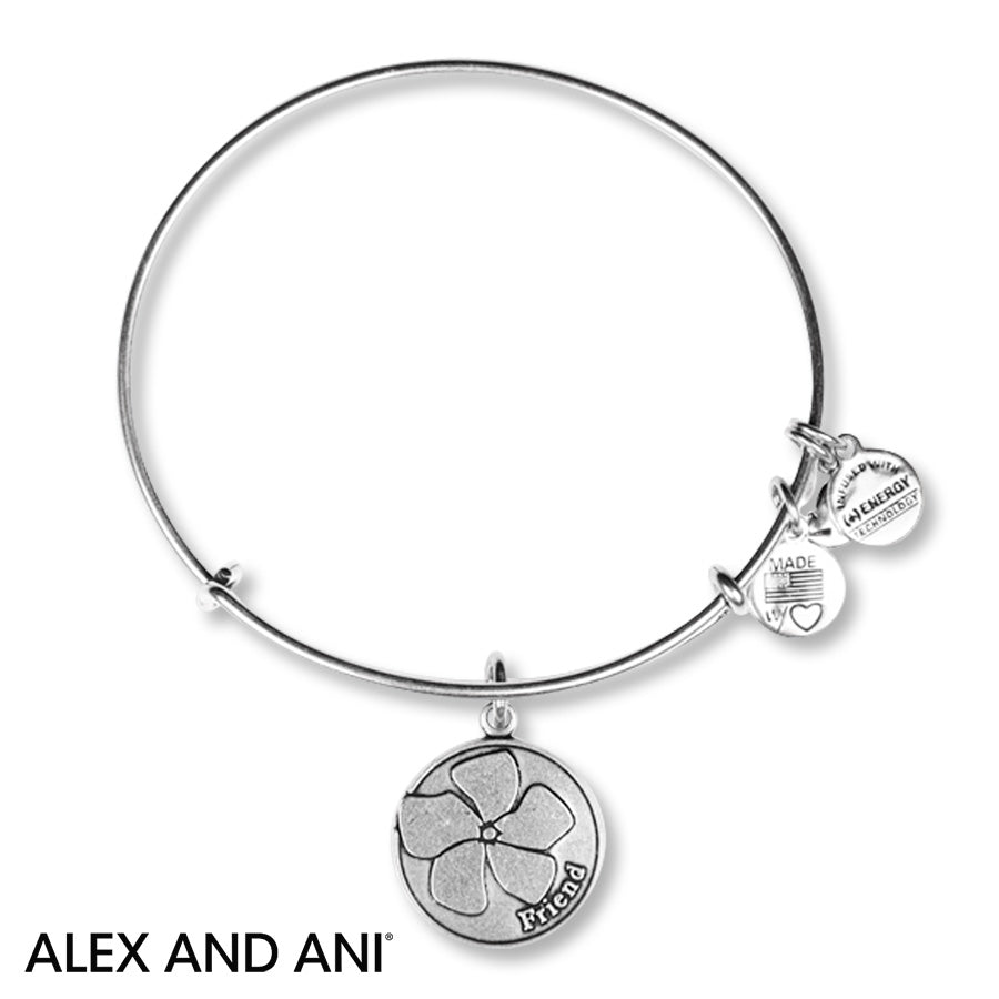 Because I Love You Friend Alex & Ani Bangle