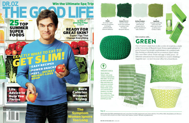 Green with Envy Reversible Pillow as seen in Dr. Oz The Good Life - Jun/2015