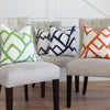 Zimba Throw Pillow Covers in all Colors Available