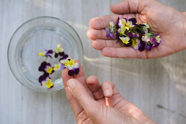 The Seven Secrets of Flower Essences