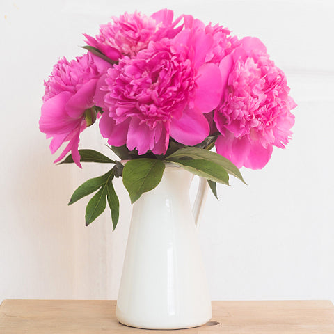 Fun facts about peonies