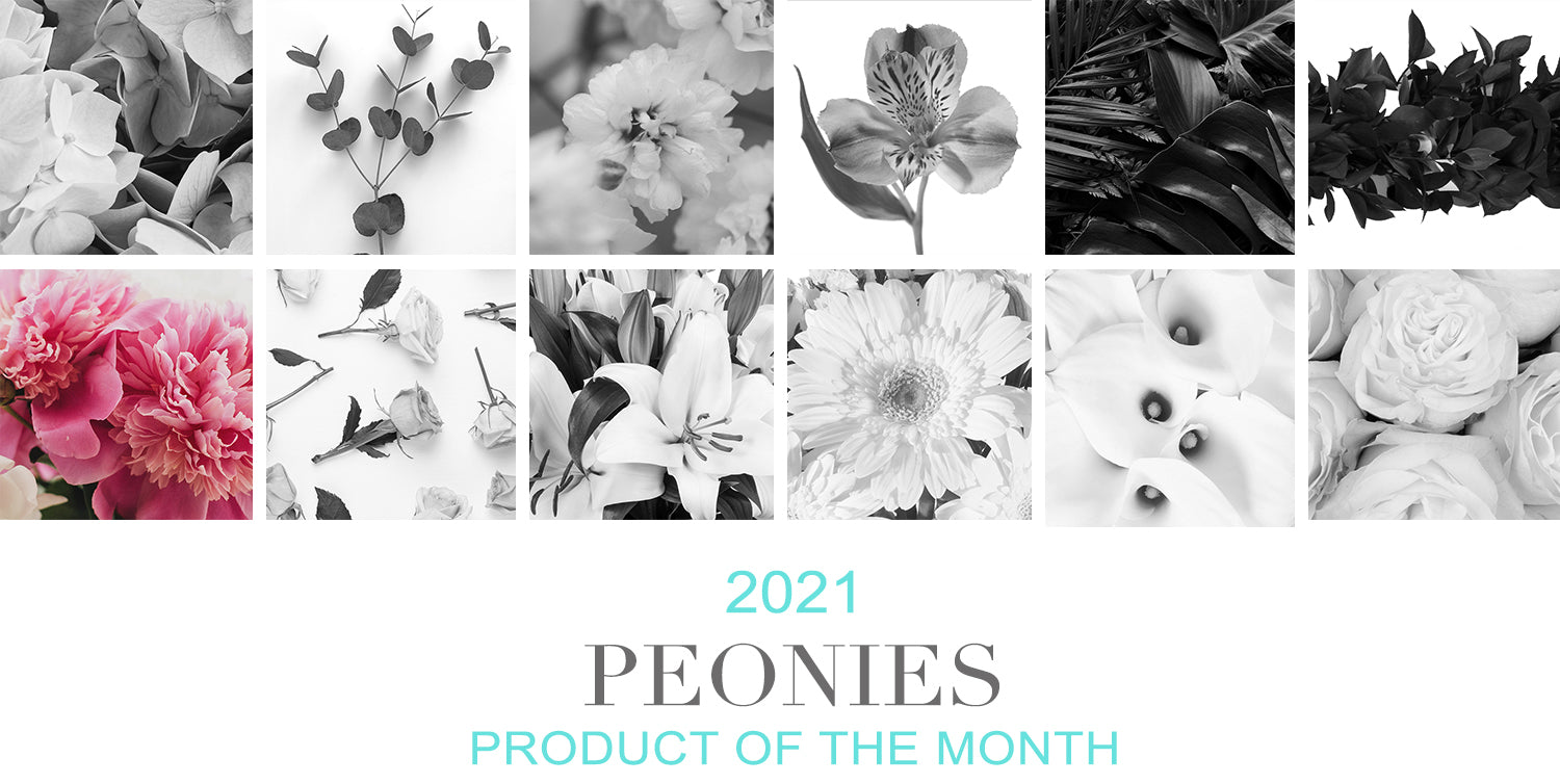 July Product of the Month Peonies
