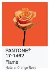 FLAME PANTONE OF THE YEAR 2017