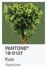 KALE PANTONE OF THE YEAR 2017