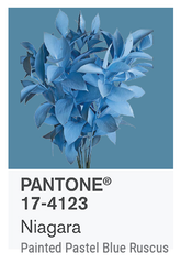 NIAGARA PANTONE OF THE YEAR 2017