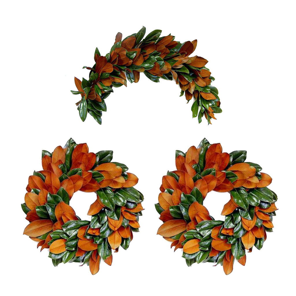 "Magnolia ""Decorator"" Box, 2 wreaths/ 1 swag, 3 Pack"
