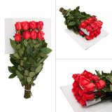 Blooming Boxes, Grower Choice Roses