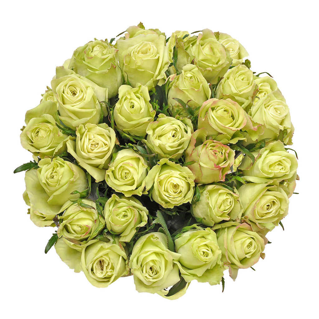 Blooming Boxes, Green Roses