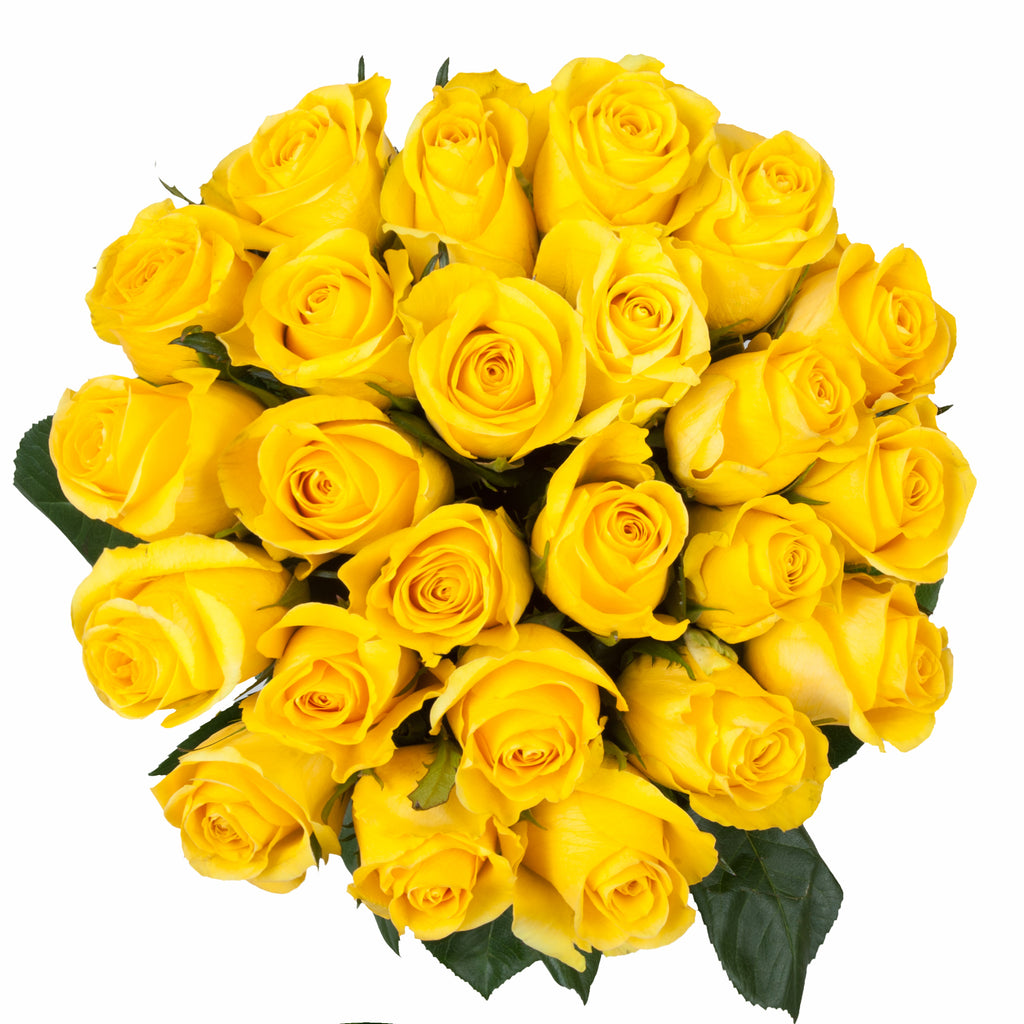 Blooming Boxes, Yellow Roses