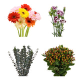 DIY Design Collection - Enchanted - 160 Stems