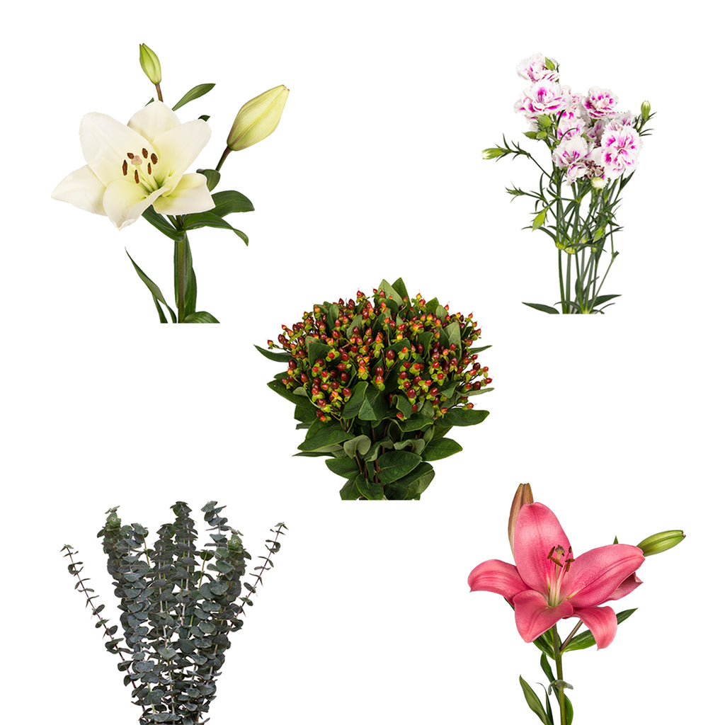 DIY Design Collection - Glee - 90 Stems