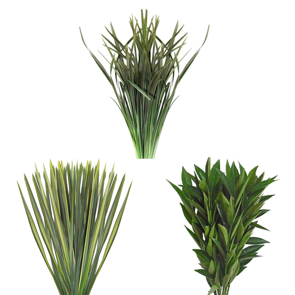 Assorted Flax Lily Grass Amp Cocculus Combo Box Bloomingmore